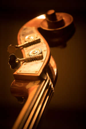 Close up shot of a double bass scroll and tuning pegs.