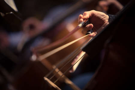 Close up shot of a man performing a cello during a concert. Banque d'images