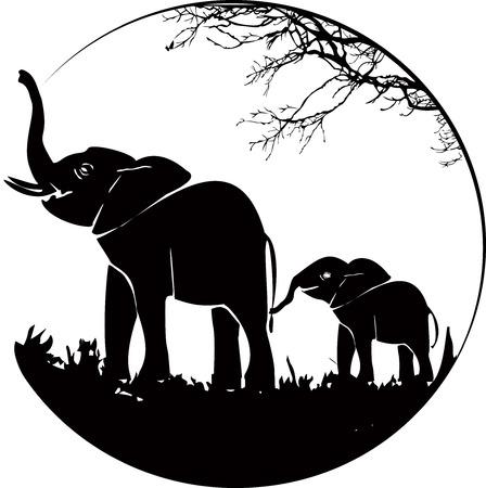 bonding: Elephants Mom and the baby