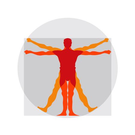 Vetruvian man, human anatomy study by Leonardo da Vinci Illustration