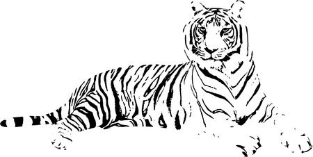 snake calligraphy: Tiger Drawing