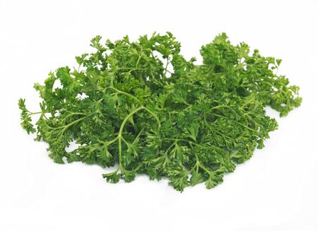 parsley: Curly parsley