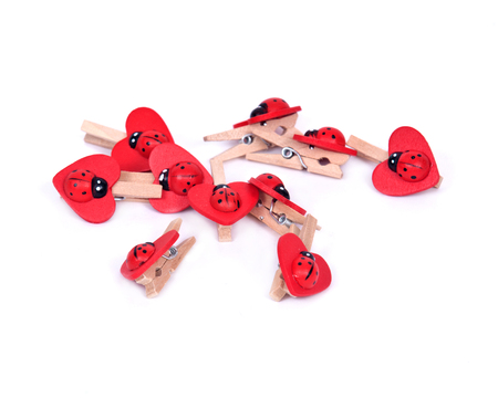 clothespins: Natural wood ladybug clothespins separated on white background