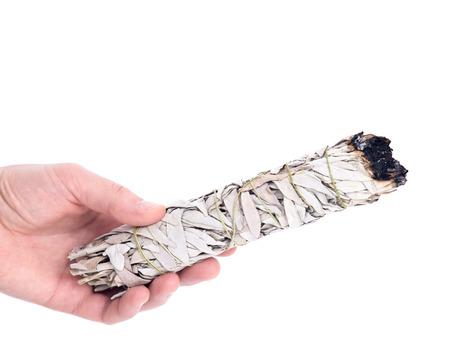smudge: Sage smudge stick separated on white background