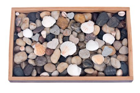 Stones and shells in wooden try separated on white background