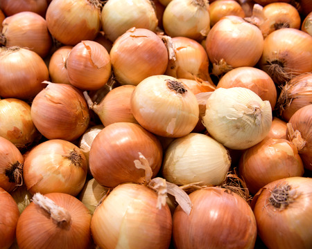 red onions: Fresh organic onion in local farmers market store