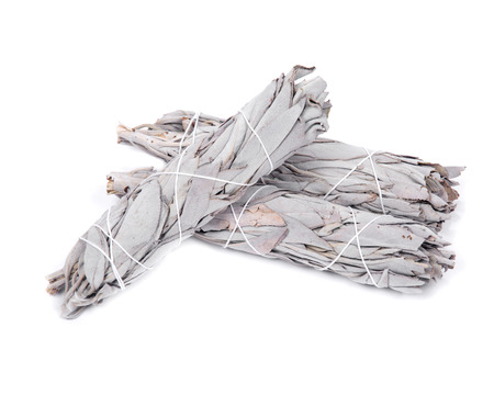 Sage smudge stick isolated on white background Stock fotó