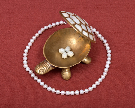 backboard: Decorative turtle jewelry box and freshwater white pearl necklace on red fabric backboard