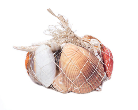 Decorative bag of various seashells from Red Sea isolated on white background