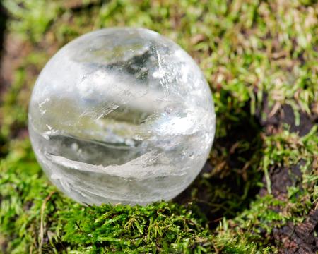 Esfera mágica de cristal de cuarzo transparente lemuriano en musgo, briofita y corteza, ritidoma en reserva forestal.