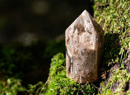 Natural polished shamanic dream quartz point with various inclusions on moss, bryophyta and bark, rhytidome in forest preserve. Imagens - 110468461