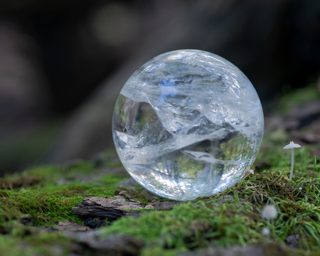 Lemurian Clear Quartz Sphere crystal magical orb on moss, bryophyta and bark, rhytidome in forest preserve. Banque d'images