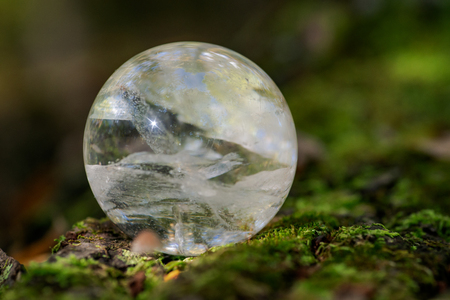 Lemurian Clear Quartz Sphere crystal magical orb on moss, bryophyta and bark, rhytidome in forest preserve. 免版税图像
