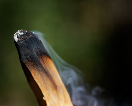 Smudging ceremony using Peruvian Palo Santo holy wood incense stick in forest preserve. Imagens