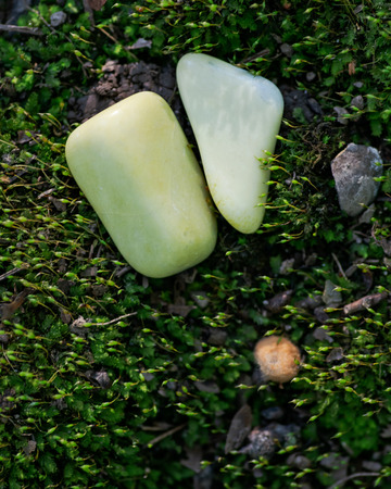 Tumbled yellowish Serpentine stone from Peru on green moss in the forest preserve.
