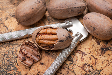 Fresh organic pecans nuts and stainless steel nutcracker on natural cork background.