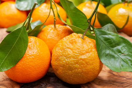 Fresh ripe organic mandarins with green leaves on natural olive wood like background. Stock Photo