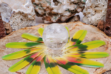 Lemurian Clear Quartz Sphere crystal magical orb in the middle of a circle made of colorful parrot feathers.