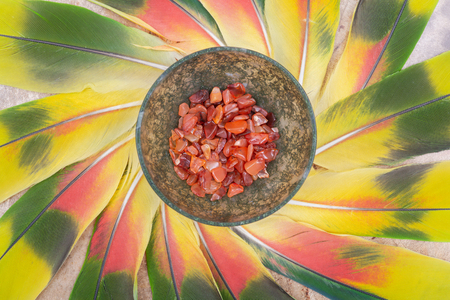 Moss Agate hand carved polished bowl from Morocco with tumbled Carnelian chips from Brazil in the middle of a circle made of colorful parrot feathers.