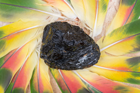 Extra Grade Black Tourmaline chunk from Brazil in the middle of a circle made of colorful parrot feathers.