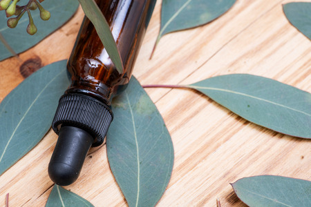 Eucalyptus Essential oil in Amber Round Glass Bottle with Glass Dropper and Fresh Eucalyptus leaves on wooden background. Phytotherapy. 스톡 콘텐츠