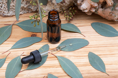 Eucalyptus Essential oil in Amber Round Glass Bottle with Glass Dropper and Fresh Eucalyptus leaves on wooden background. Phytotherapy. Banco de Imagens