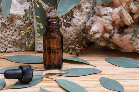 Eucalyptus Essential oil in Amber Round Glass Bottle with Glass Dropper and Fresh Eucalyptus leaves on wooden background. Phytotherapy. Stock Photo