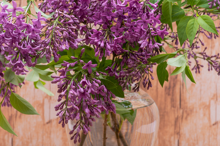Fresh cut Purple Lilac Flowers in clear glass vase on wooden background. Syringa vulgaris.