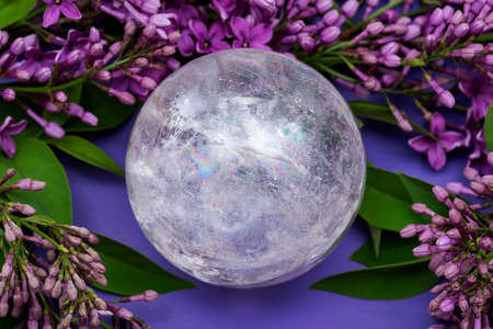 Lemurian Clear Quartz Sphere crystal magical orb surrounded by purple lilac flowers.