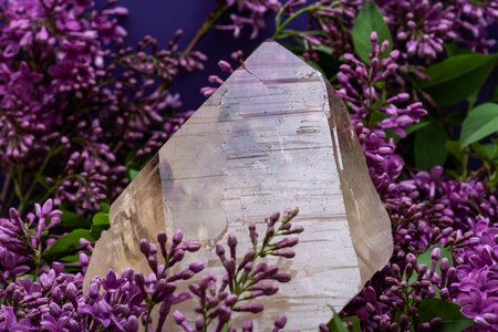 Huge natural Citrine Cathedral Quartz from Brazil surrounded by purple lilac flowers.