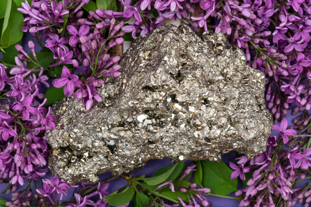Natural Pyrite Cluster Specimen from Peru surrounded by purple lilac flowers. Stock Photo