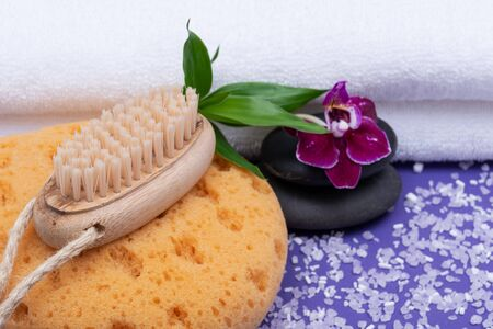Spa Wellness Concept. Foam Bath & Shower Sea Sponge, Natural Bristle Wooden Brush, Basalt Stones, Bamboo and Orchid Flower on purple background.