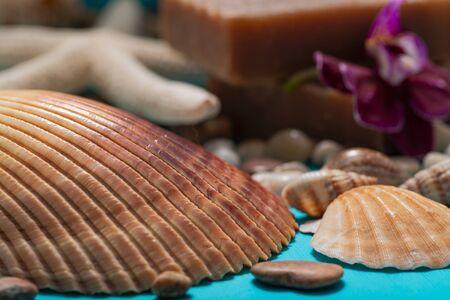 Handmade moisturizing Frankincense & Myrrh Goat's Milk Bar Soap decorated with Pebbles, Sea Stars, Sea Shells and Orchid Flower on blue background.