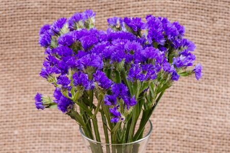 Dark Purple Statice (Limonium sinuatum) Flowers in clear glass vase on natural burlap background. Mediterranean plant in Plumbaginaceae Family.