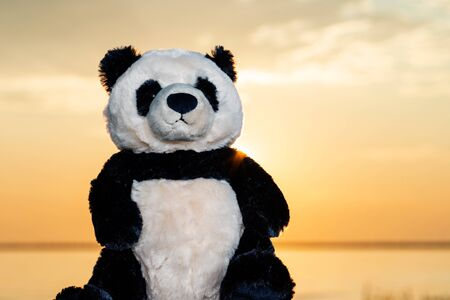 Panda Bear stuffed plush toy at the sunrise in front of the lake. Love, Romance and Friendship concept.