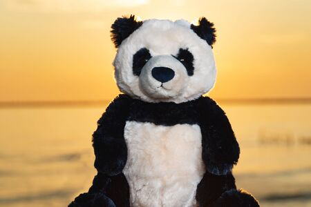 Panda Bear stuffed plush toy at the sunrise in front of the lake. Love, Romance and Friendship concept. Foto de archivo - 128422394
