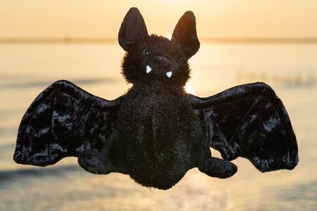 Stuffed funny Black Bat toy at the sunrise in front of the lake. A Symbol of Rebirth. Guardian of the Night. Banque d'images - 128873627