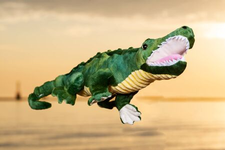 Green soft stuffed toy Crocodile at the sunrise in front of the lake. 免版税图像 - 128873640