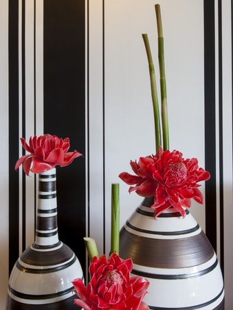 the red flower in the vase , black and white background Stock Photo