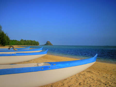 Outrigger Canoes Ready For Sea