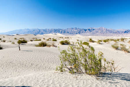 sand quarry: Rising up nearly a 100 feet above Mesquite Flat, Death Valley \\ \ Stock Photo
