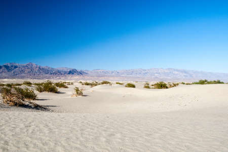 sand quarry: Sand dunes in Death Valley National Park near Stovepipe Wells