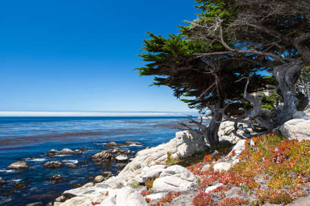 View of the sea from the stone shore on 17 Mile Drive, California, USA ********** Sea View at 17 Mile Drive in Big Sur California photo