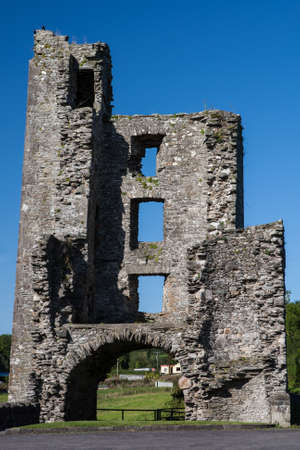 cistercian: Mellifont Abbey located in County Louth (Ireland), the first Cistercian abbey which to be built in Ireland. Founded in 1142 on the orders of Saint Malachy, Archbishop of Armagh, Mellifont Abbey sits on the banks of the River Mattock, 6 miles north-west of