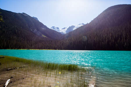 greenish blue: A highlight of the park is the turquoise blue waters of Lower, Middle and Upper Joffre lakes, all three are located along the trail end of month, and each more stunning than the load.