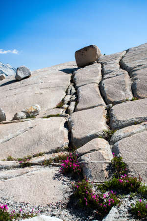 access point: Rock formations at the Tioga Pass. The Tioga Pass is a 3031 m high mountain pass in the Sierra Nevada in California. The California State Route 120 runs over him. At the sametime the Tioga Pass is the eastern access point in the Yosemite National Park