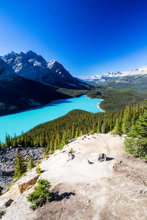 accessed: Peyto Lake is a glacier-fed lake located in Banff National Park in the Canadian Rockies. The lake is Itself Easily Accessed from the Icefields Parkway. It was named for Bill Peyto, in early trail guide and trapper in the Banff area.