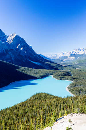 tarn: Peyto Lake is a glacier-fed lake located in Banff National Park in the Canadian Rockies. The lake is Itself Easily Accessed from the Icefields Parkway. It was named for Bill Peyto, in early trail guide and trapper in the Banff area.