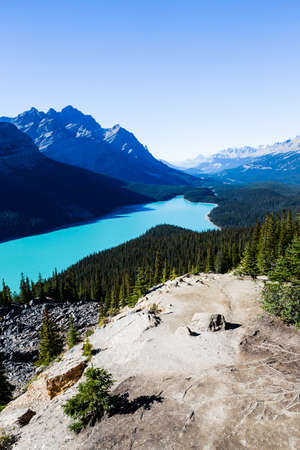canadian rockies: Peyto Lake is a glacier-fed lake located in Banff National Park in the Canadian Rockies. The lake itself is easily accessed from the Icefields Parkway.