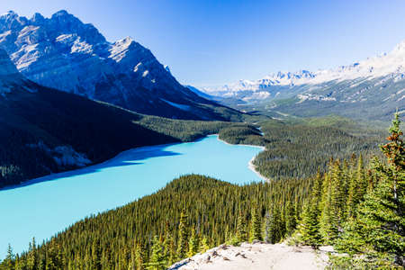 lake: Peyto Lake is a glacier-fed lake located in Banff National Park in the Canadian Rockies. The lake itself is easily accessed from the Icefields Parkway.